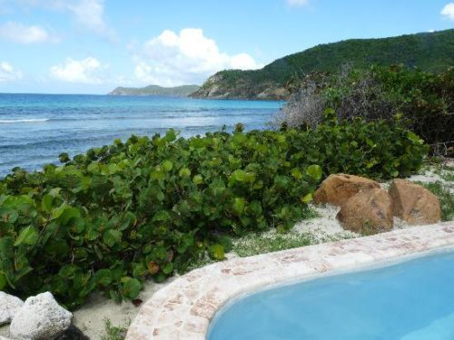 whole area of guana island