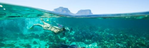 Snorkeling at lord howe