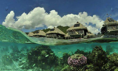 Bora Bora natural beauty