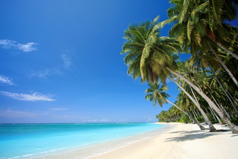 tranquil beach Kauai