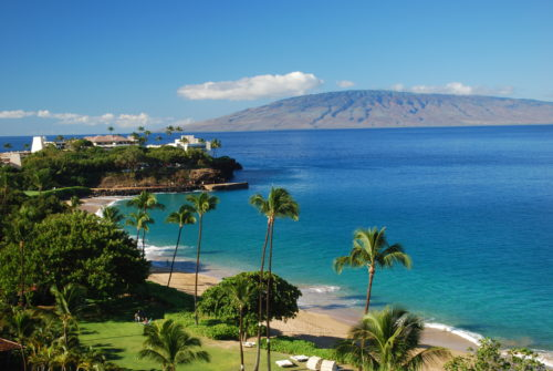 Maui whole area