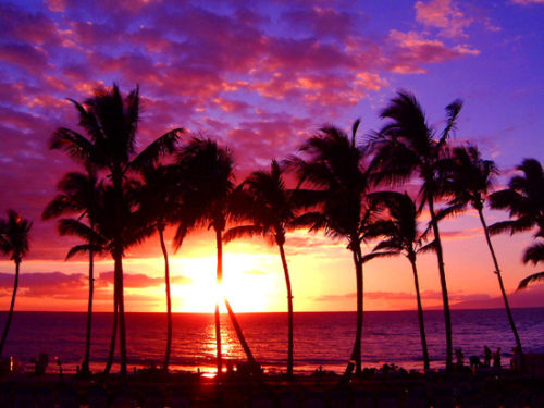 Maui best sunset scenery