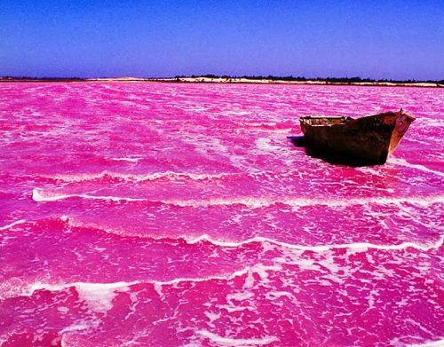 Hillier Lake the pink water