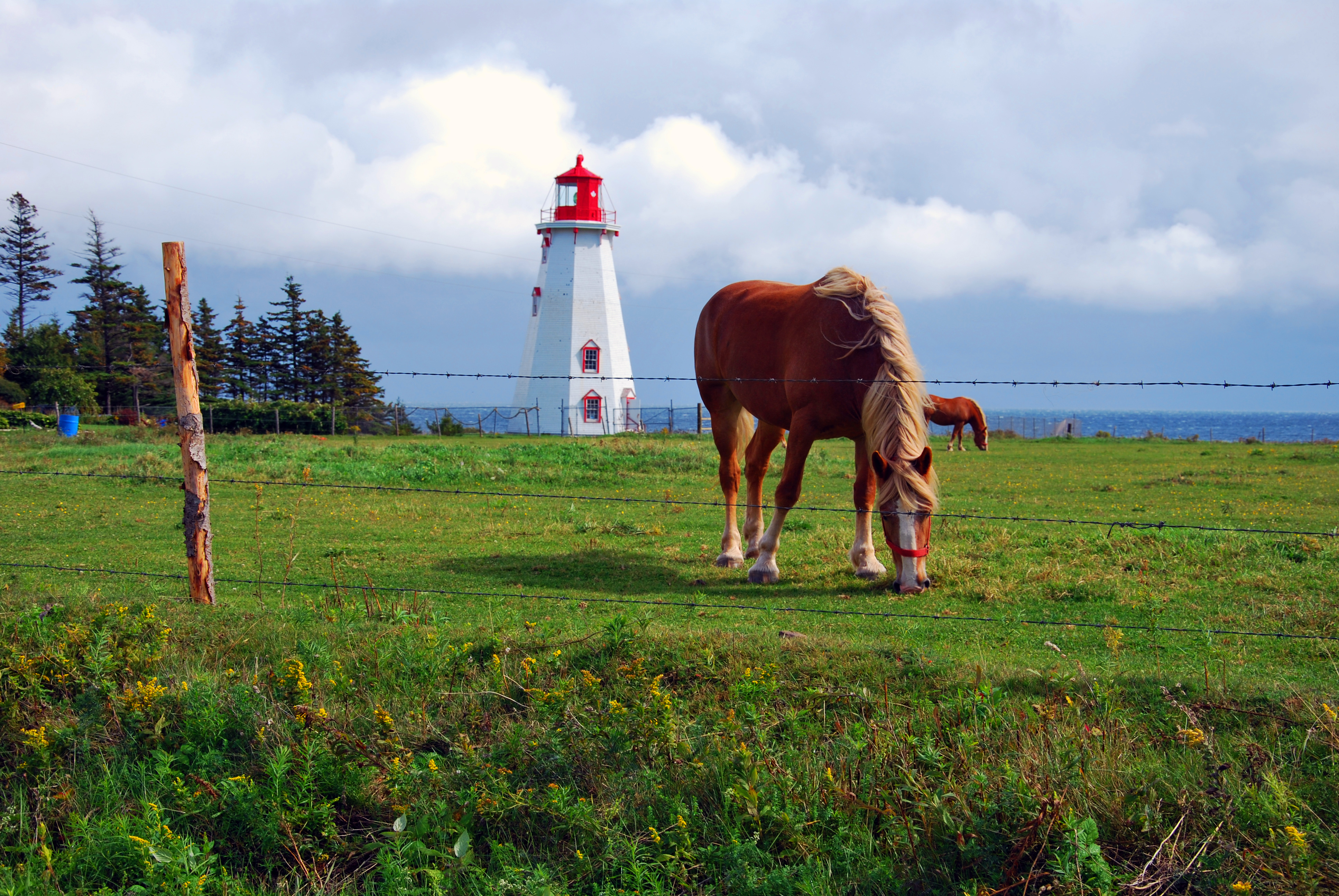 Top Cities Of Prince Edward Island By Populaiton
