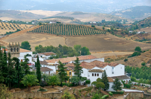 the village area at andalusia