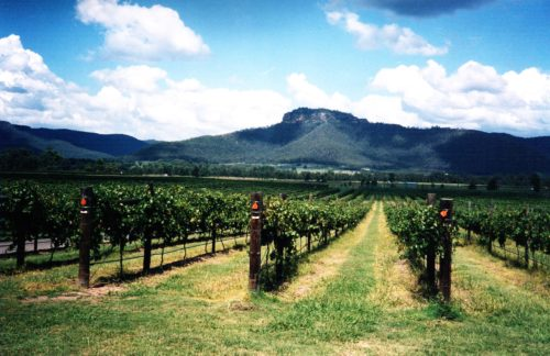 hunter valley sydney