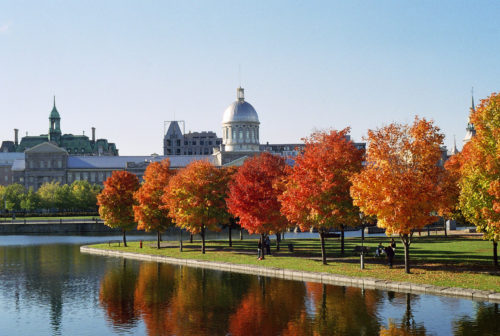 Marché Bonsecours and Foliage montreal