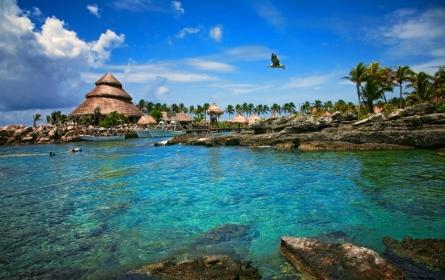 Playa Del Carmen best coral view
