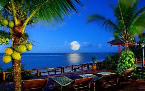 Playa Del Carmen night scenery