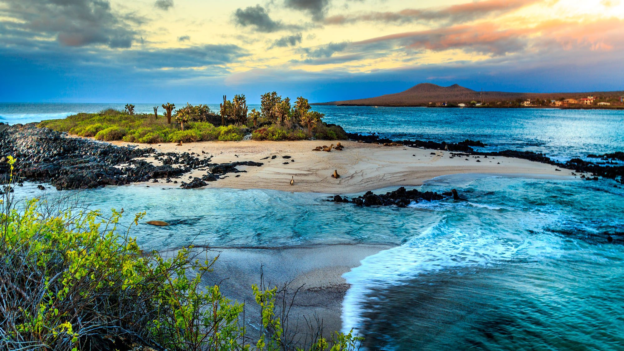 Galapagos islands attractive places for tourism gets ready for Best pictures