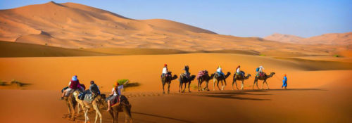 Camel trekking tour at marrakech
