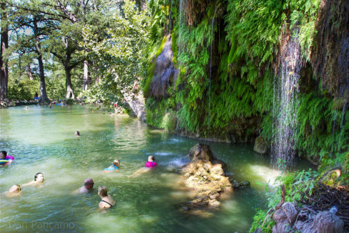 Krause springs near austin texas