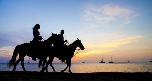 Takiab beach horse riding